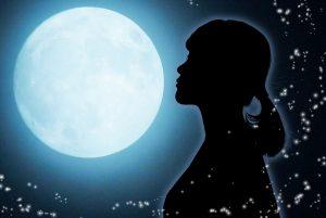 月の館のガイダンス