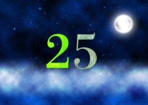 25番の月の館